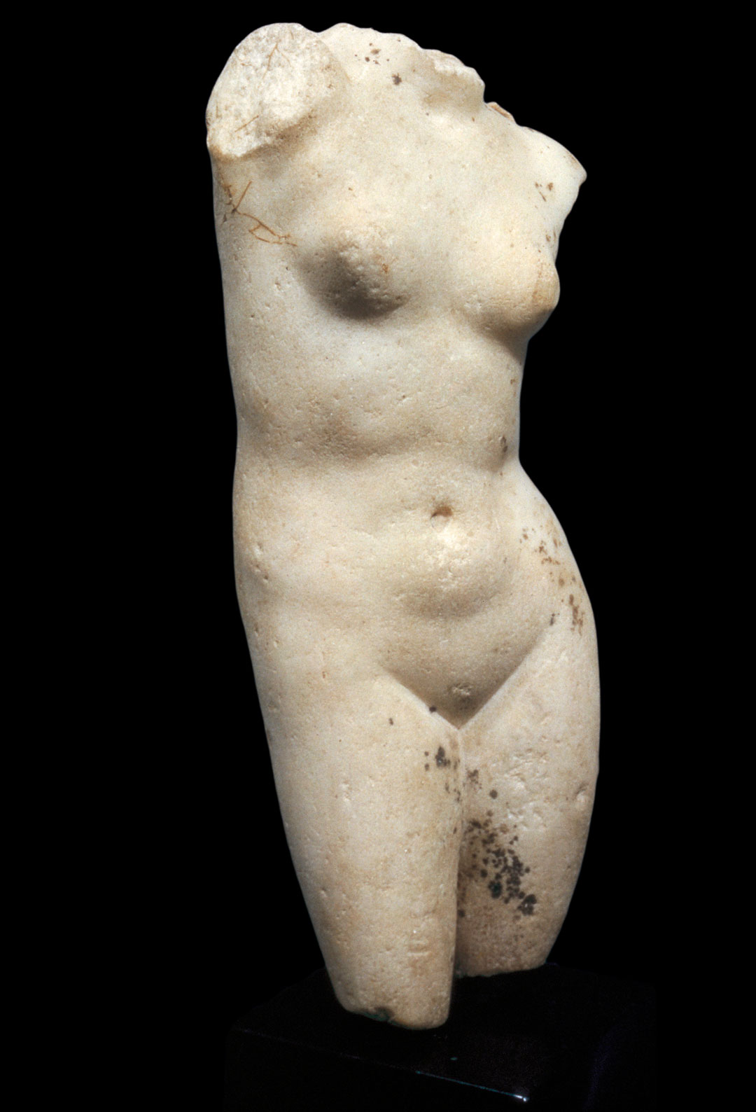 Object of the Week: Aphrodite Torso