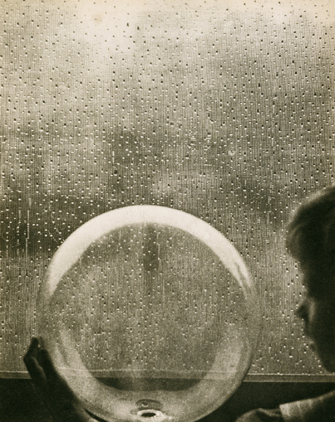 Drops of Rain, Clarence H. White (American, 1871-1925), ca. 1903, National Gallery of Australia