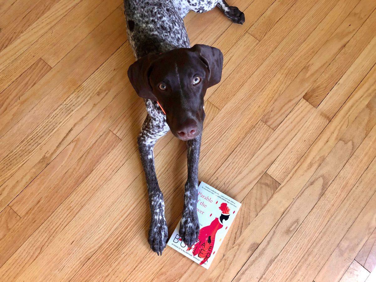 SAM Book Club: Reading Octavia Butler in 2020