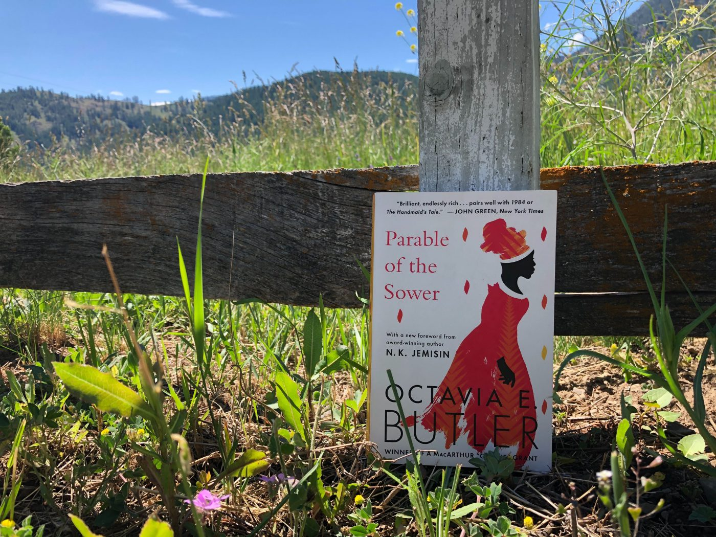 SAM Book Club: Empathy Lives On in Parable of the Sower