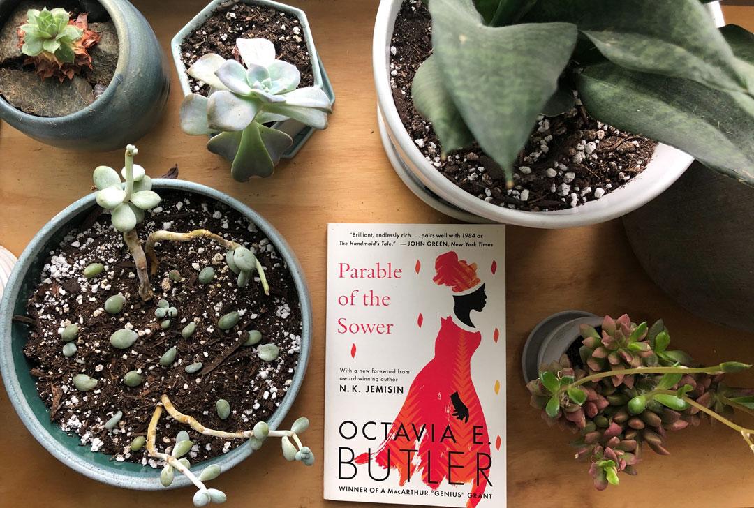 SAM Book Club: Octavia Butler's Brand of Sci-Fi