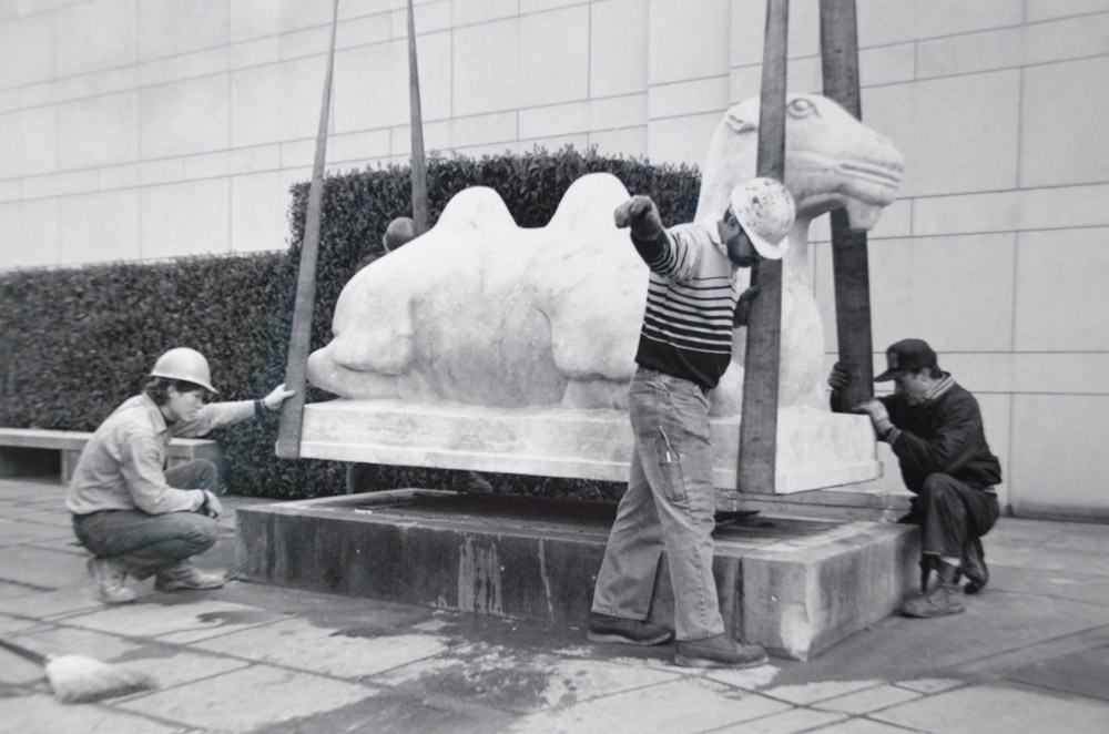 Camel replica being installed