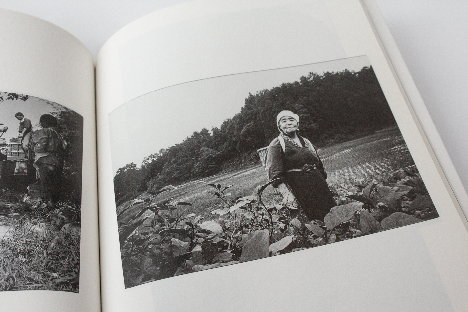 Japanese Photobooks from the Collection of Chris Harris, Part 3