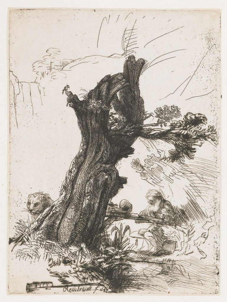 Saint Jerome Beside a Pollard Willow, 1648, Rembrandt van Rijn